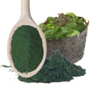 alga-espirulina-en-polvo-300x300